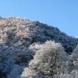 初雪の里山