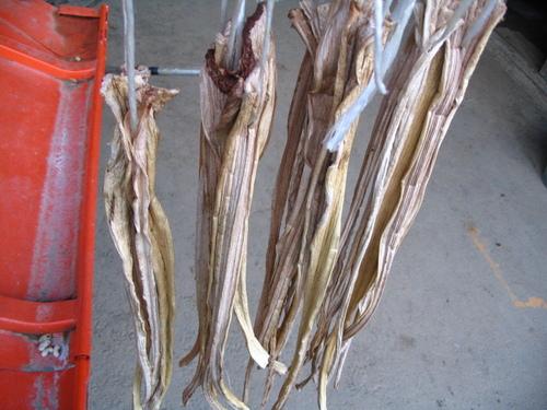 里芋の茎干し