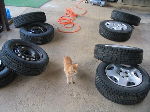 タイヤとミー