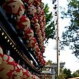 玉井神社祭礼