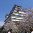 Img_0840 鶴ヶ城(つるがじょう)