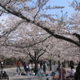 Img_0841 鶴ヶ城公園