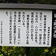 塩ノ崎大桜の立て看板