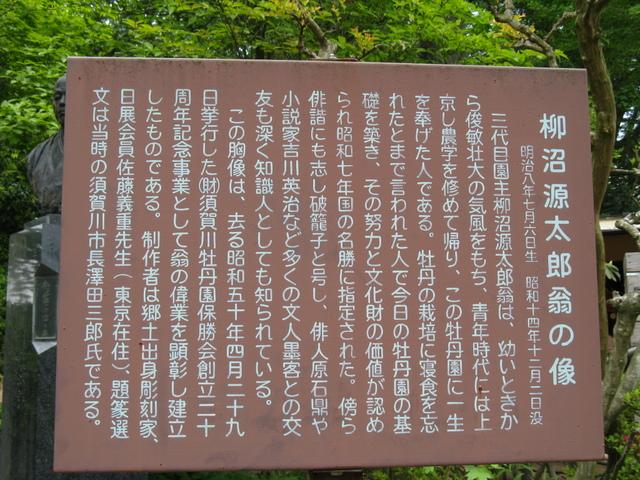 須賀川牡丹園(すかがわぼたんえん)