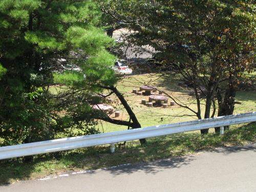 Img_0636 県民の森、広場